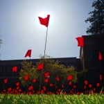Red flags planted in the grass.